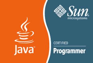 Sun Certified Java Programmer
