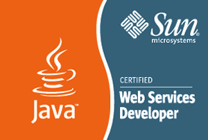 Sun Certified Developer for Java Web Services
